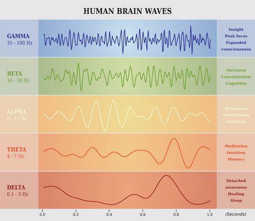 brain-waves-chart